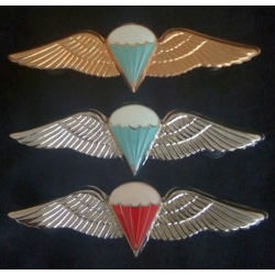 wings_pic